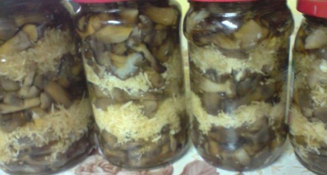 Ghebe - ciuperci cu hrean la borcan