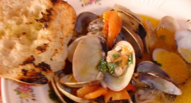 Clams stew
