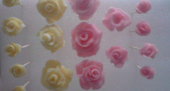 Trandafiri din rahat